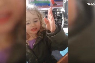Bee 'waves' at girl, 3, who saved it with sugar and water !